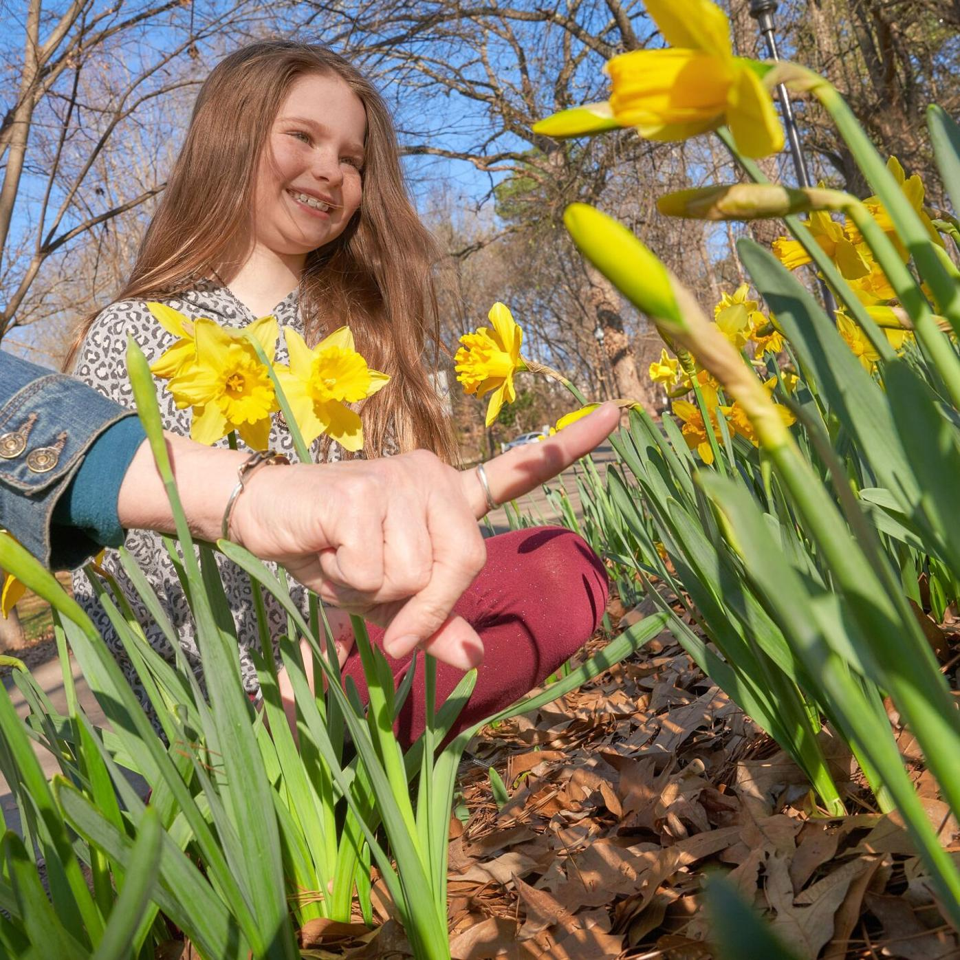 031021_MNS_Daffodil_Project_001 girl