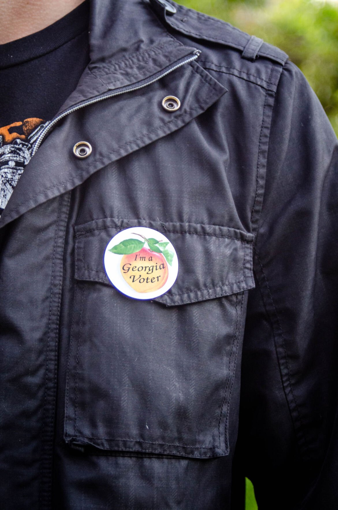 Georgia Voter 2