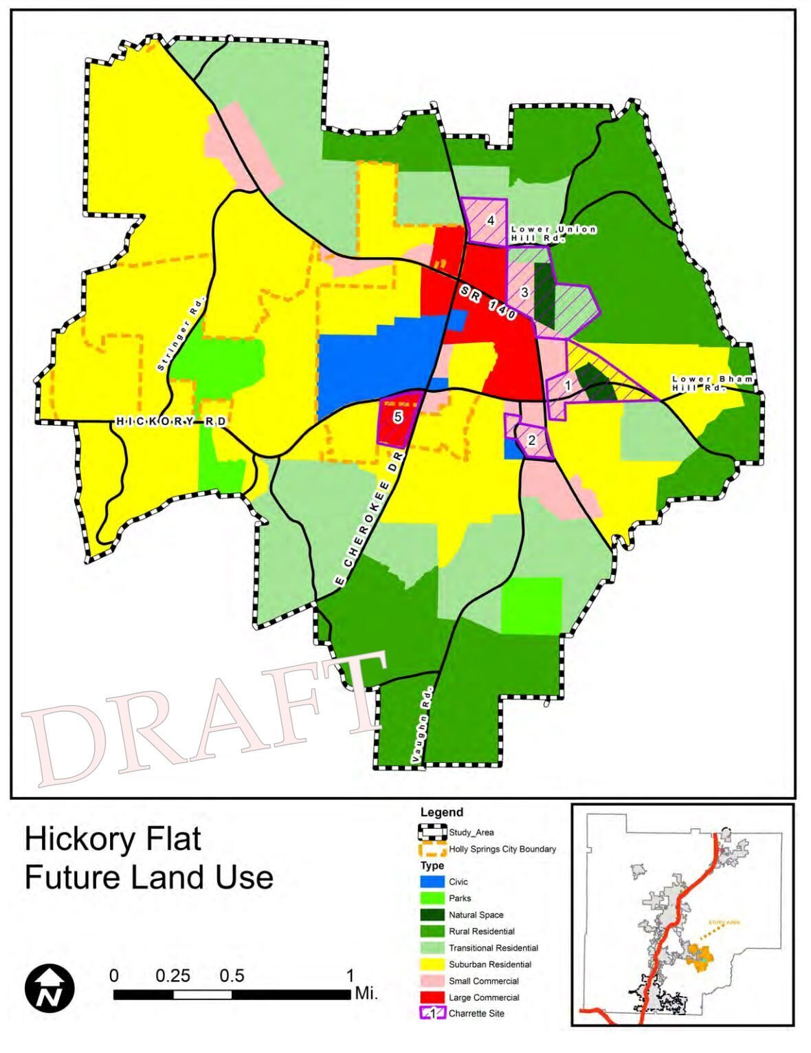 Hickory Flat future land use plan.JPG