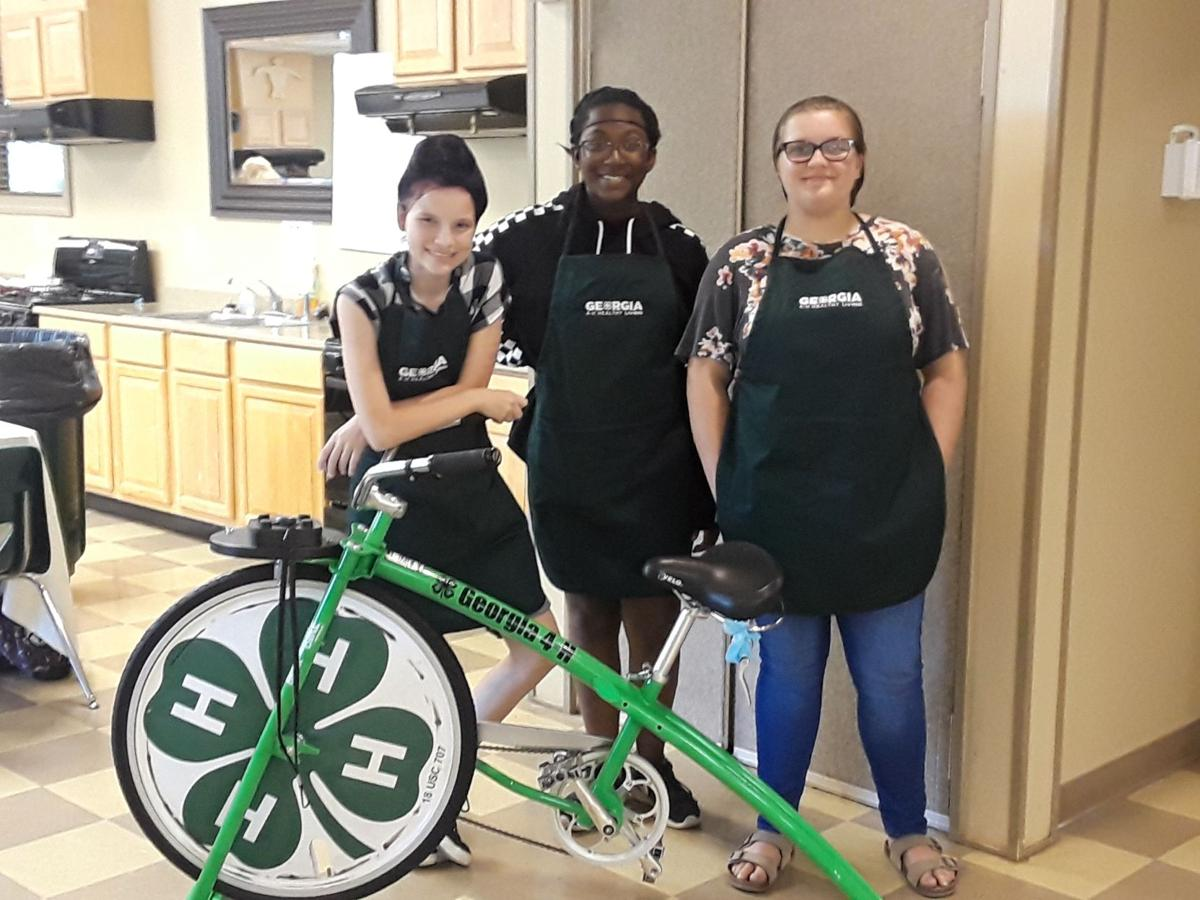 Polk County 4-H Healthy Living Ambassadors