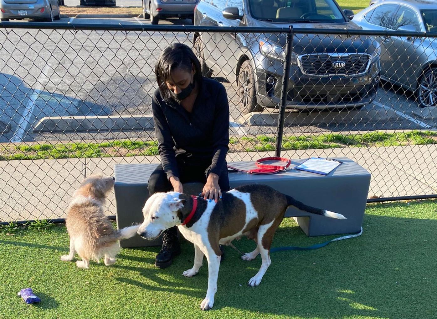 032421_MNS_LifeLine_fostering_001 LaShondria with dogs