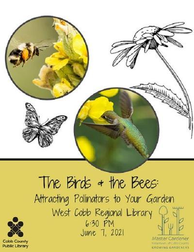 052921_MDJ_Dateline_Pollinators.jpg