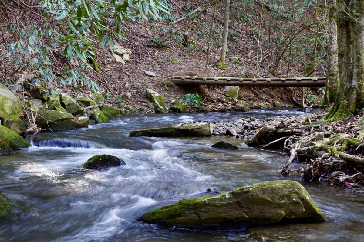 another creek rapids.jpeg