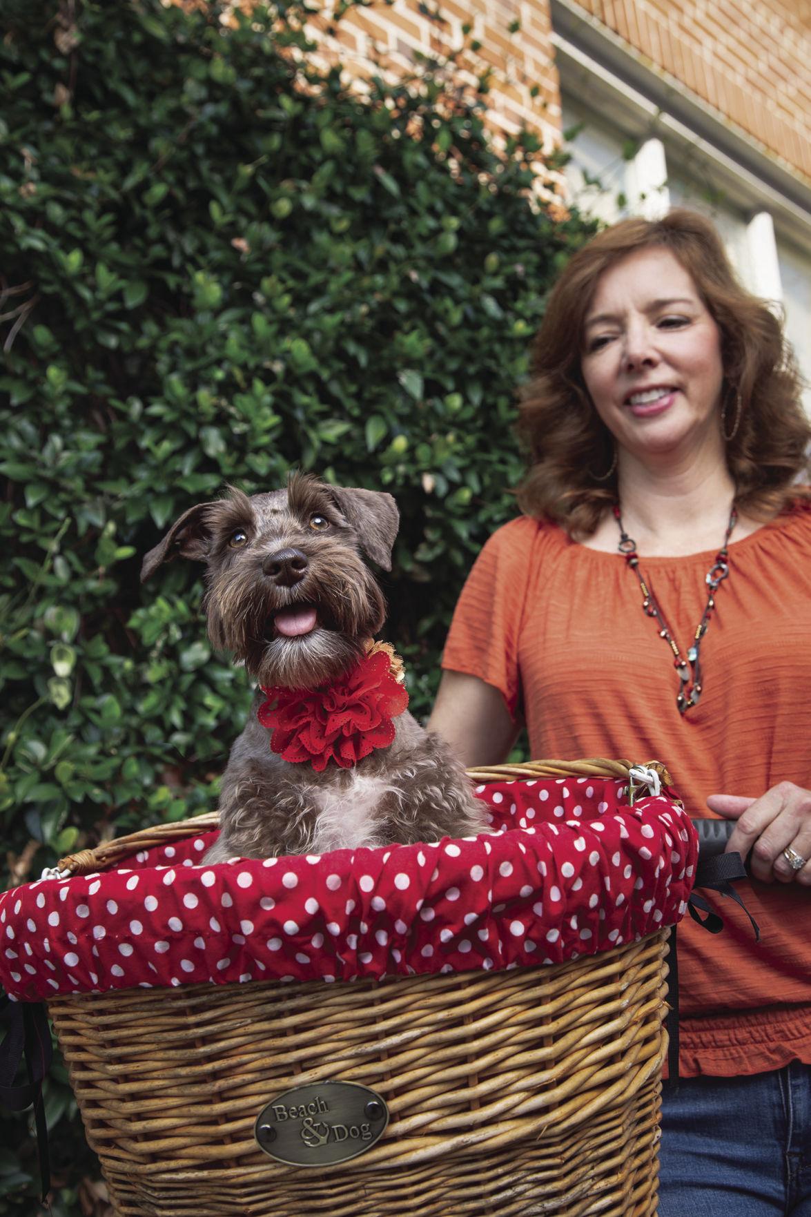 Penny in Basket_CMYK.jpg