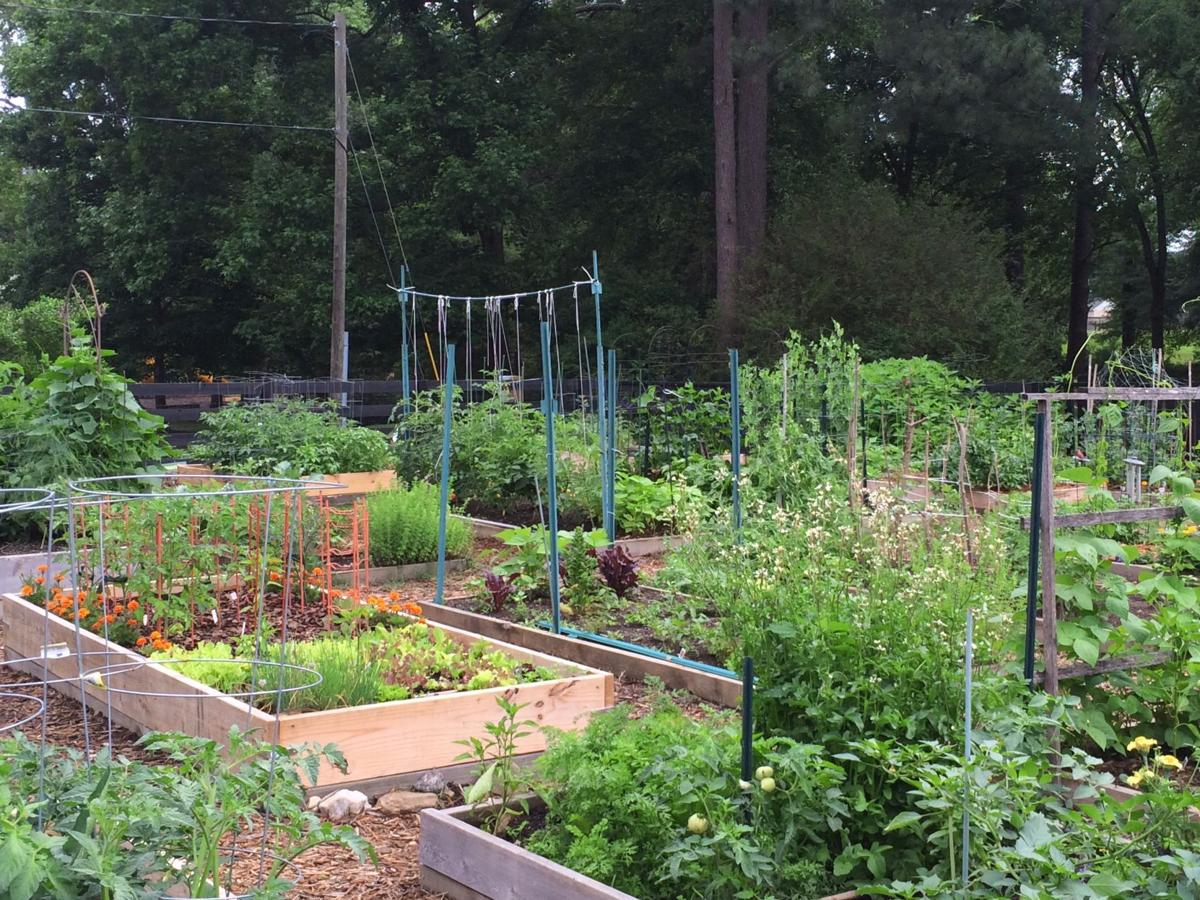 The Alpharetta Community Garden
