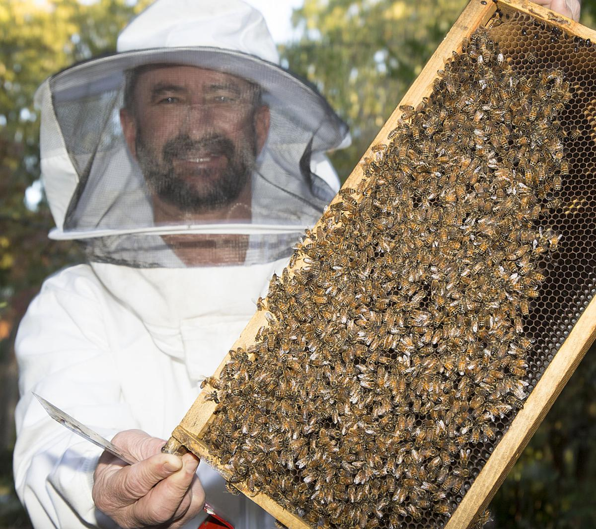 marietta backyard beekeeper makes liquid gold for annual cherokee
