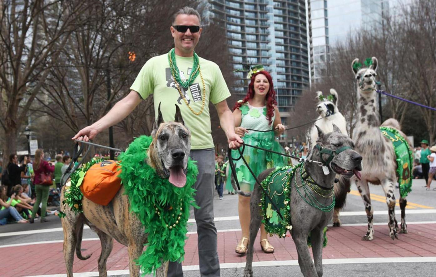 031319_MNS_St_Patricks_Day_002 parade participants with dogs and llamas