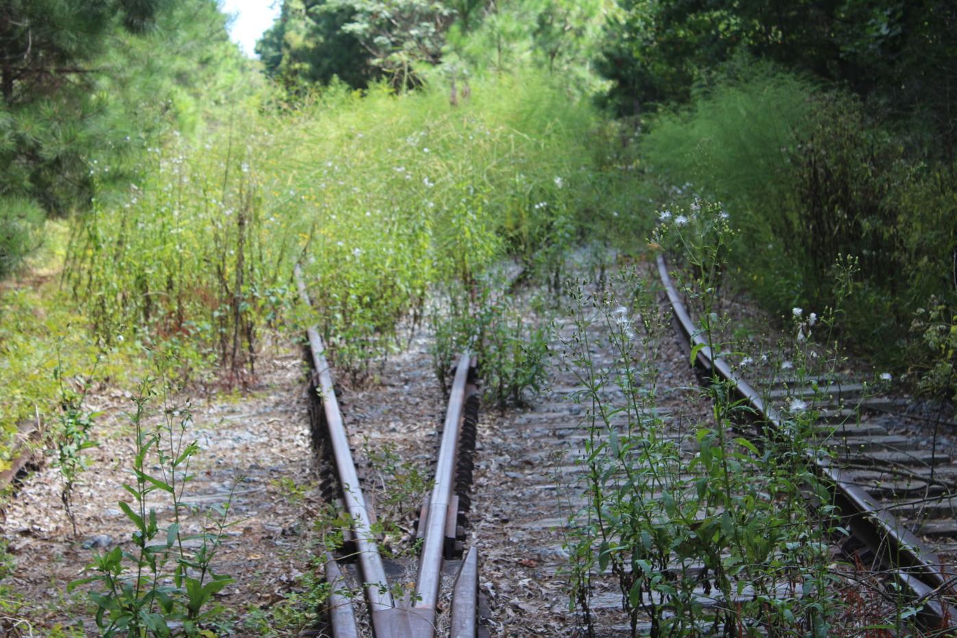 Rails to trails 003.JPG