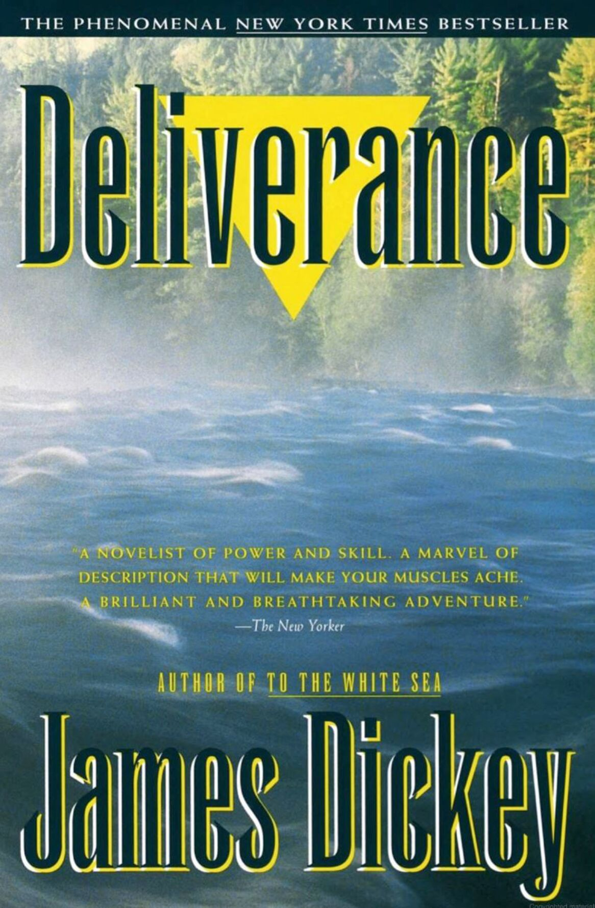 090920_MNS_Deliverance_cover Deliverance cover James Dickey