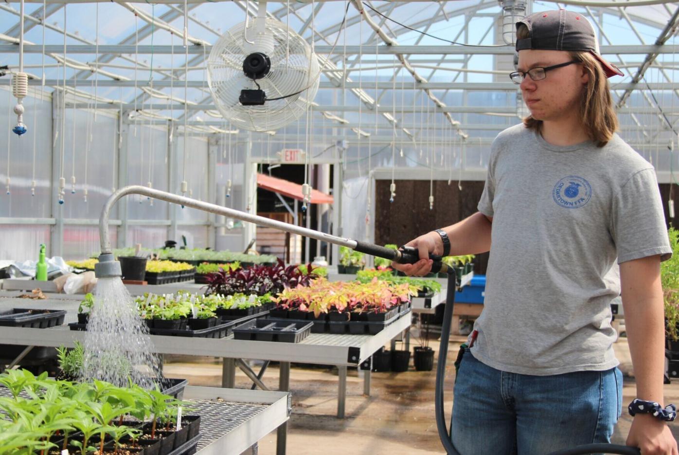 Plant sale a success for Cedartown FFA