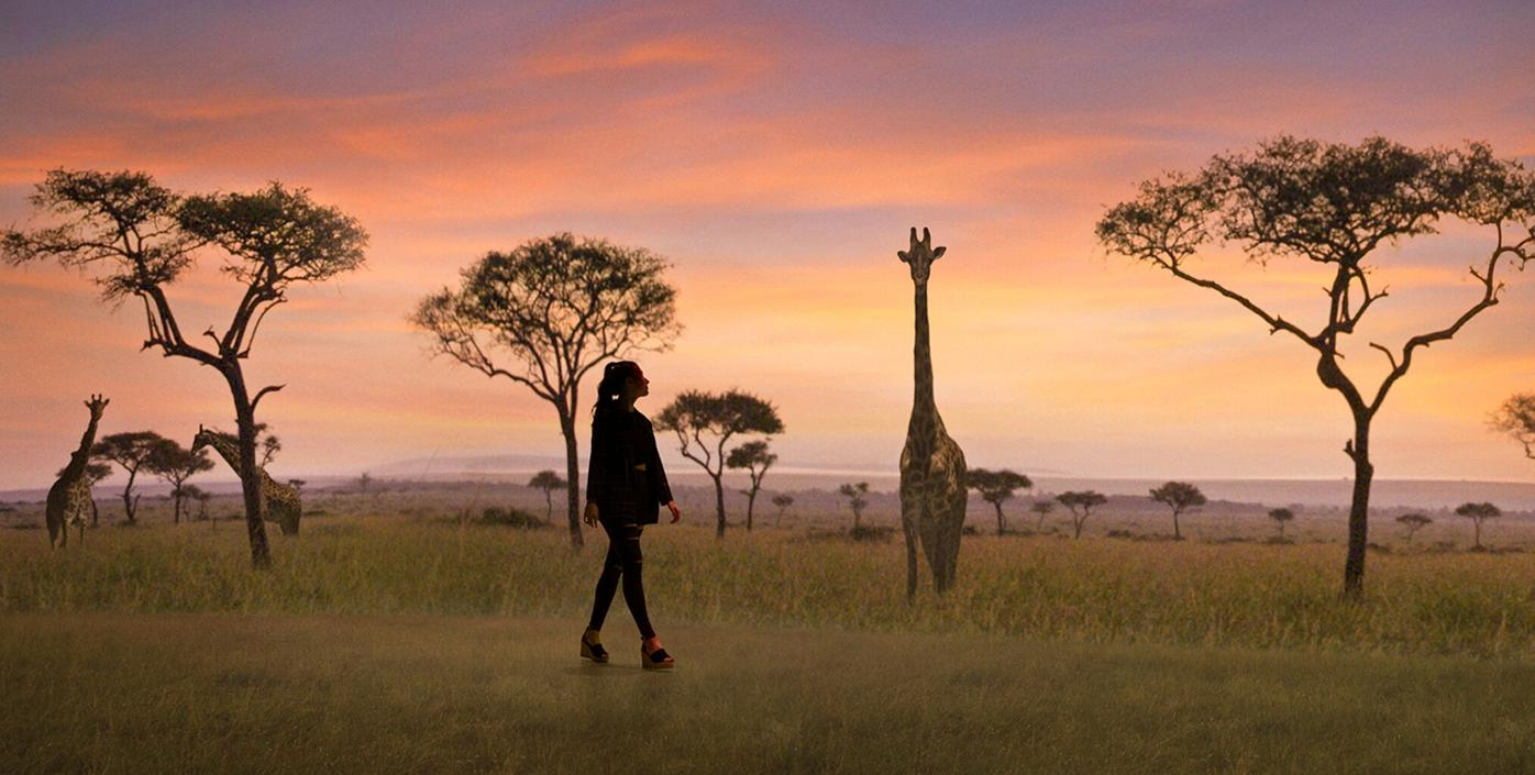 060221_MNS_Safari_Experience_001 Wild: A Safari Experience rendering with giraffes