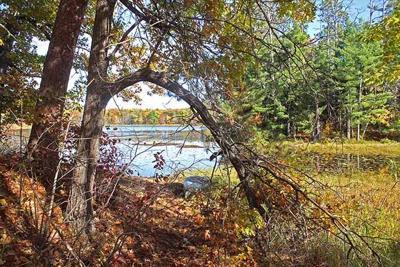 An autumnal passage at Sunfish Lake