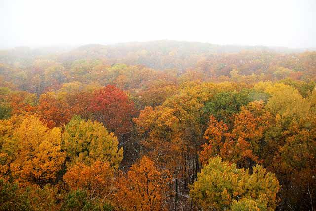 Fall colors from Kathio Tower