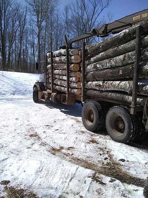 Black Lab Logging - truck