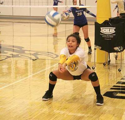 OHS Volleyball - Roxann Emerson