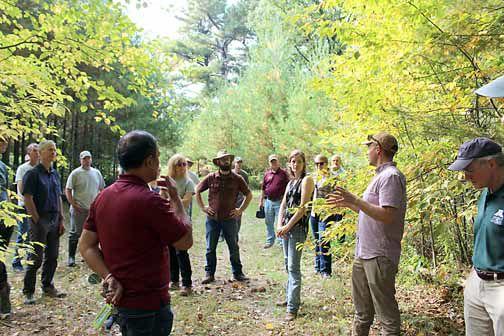 Blandin Forest Ecologist Sawyer Scherer