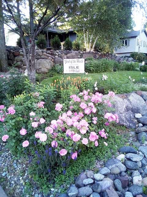 Yard of the Month - July 2019