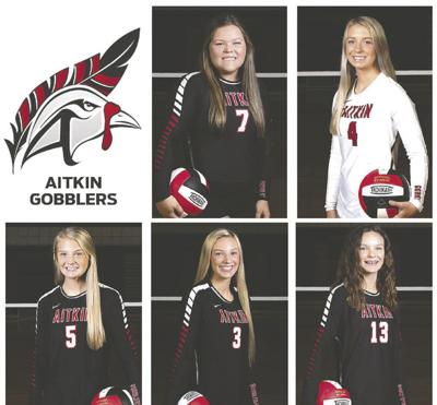Gobblers earn All-Area volleyball honors