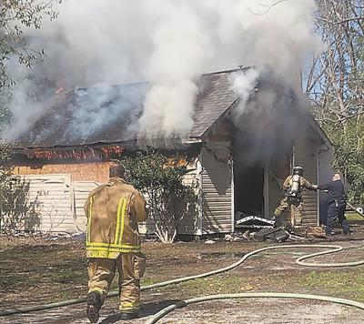 Pets rescued from shed fire