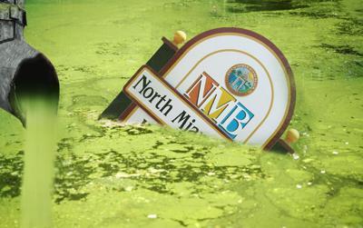NMB Toxic