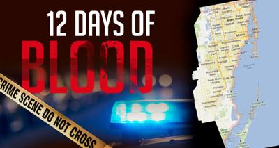 12 days of blood graphic