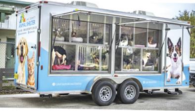 pet adoption trailer
