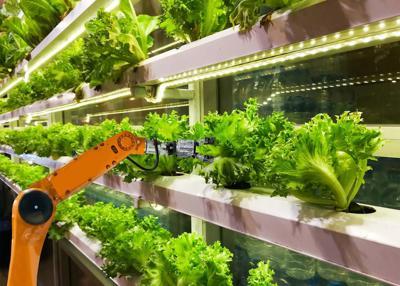 Smart robotic farmers