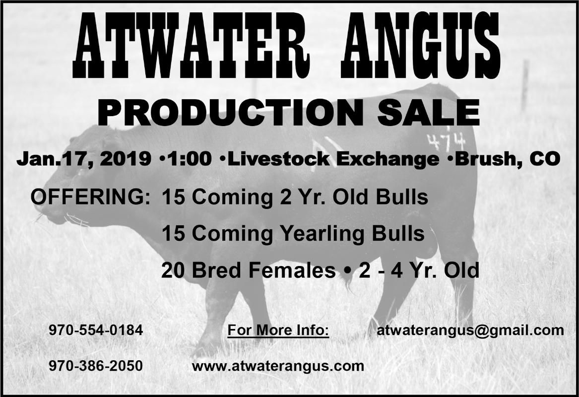Atwater Angus Production Sale
