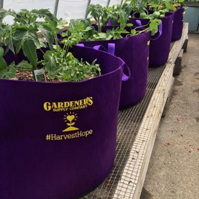 Gardener's Supply Company grow bags