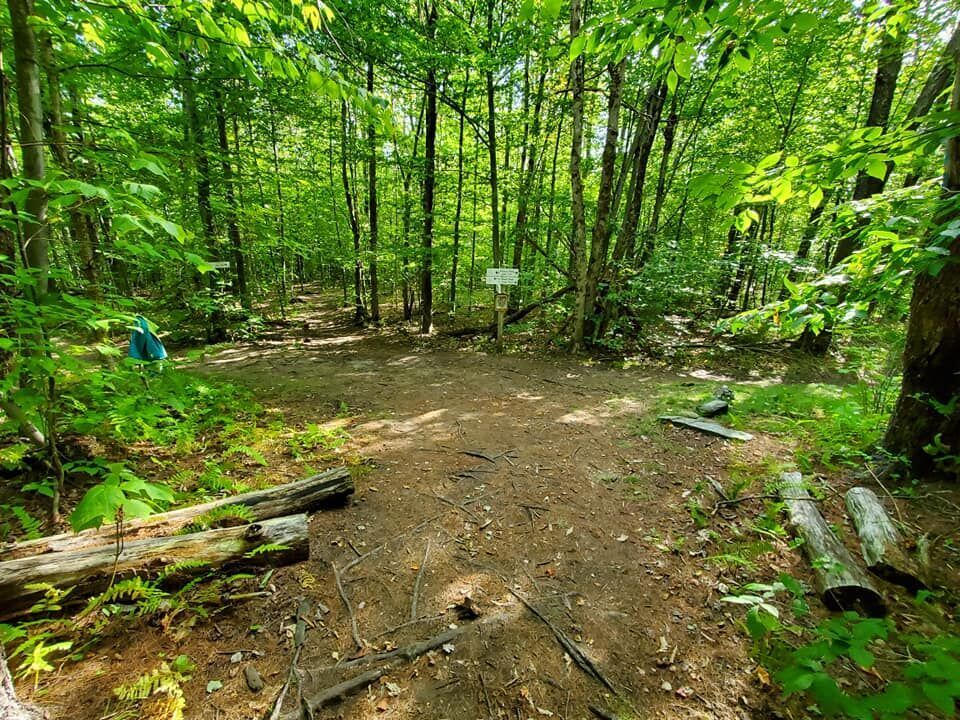 Bolton trails (5).jpg