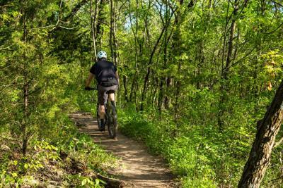 Mountain bike stock