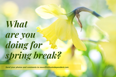 What are you doing for spring break?
