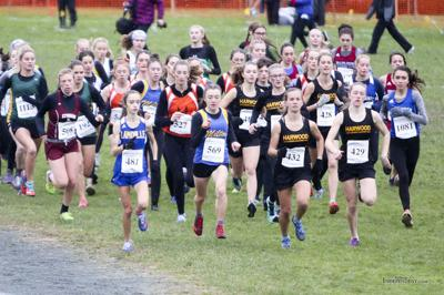 Snow can't slow down Kaigle at state meet