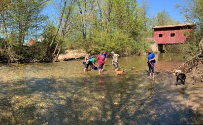 Trout release pano