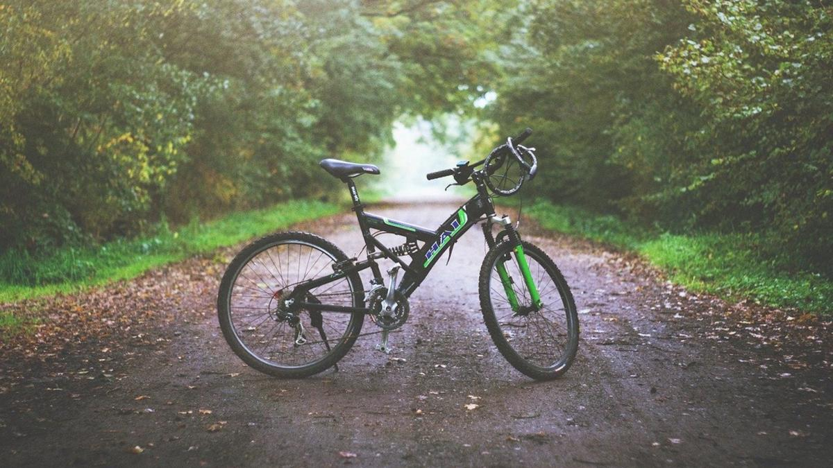 Local Motion opens bike rentals for summer