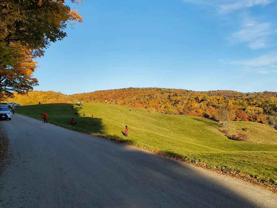 Windsor County (2).jpg
