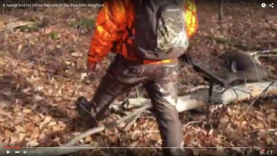 Video: a hunter and his fresh kill in the Blue Hills