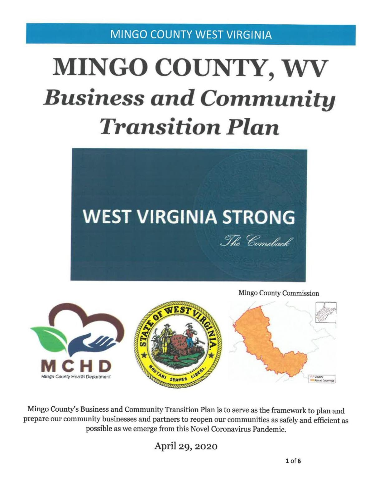 Mingo County Business and Community Transition Plan