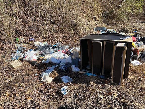 3-12 Illegal Dump 1.jpg