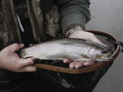 Late fall and winter can be productive for stream fishing