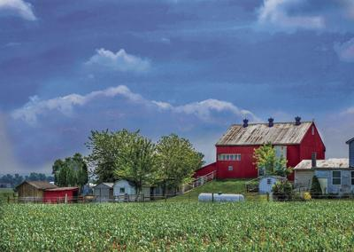 2019 Outlook For Northwest Agricultural Producers Remains Varied
