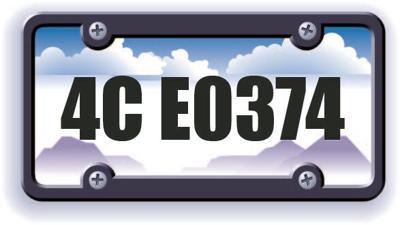 License Plate Bingo Winner 4C E0374
