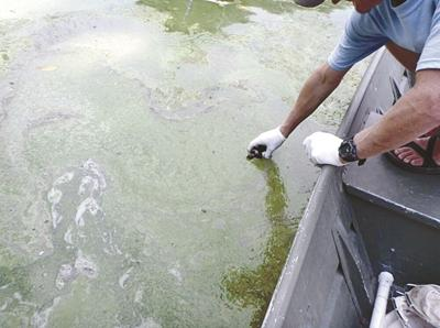 County officials discuss algae blooms in local lakes