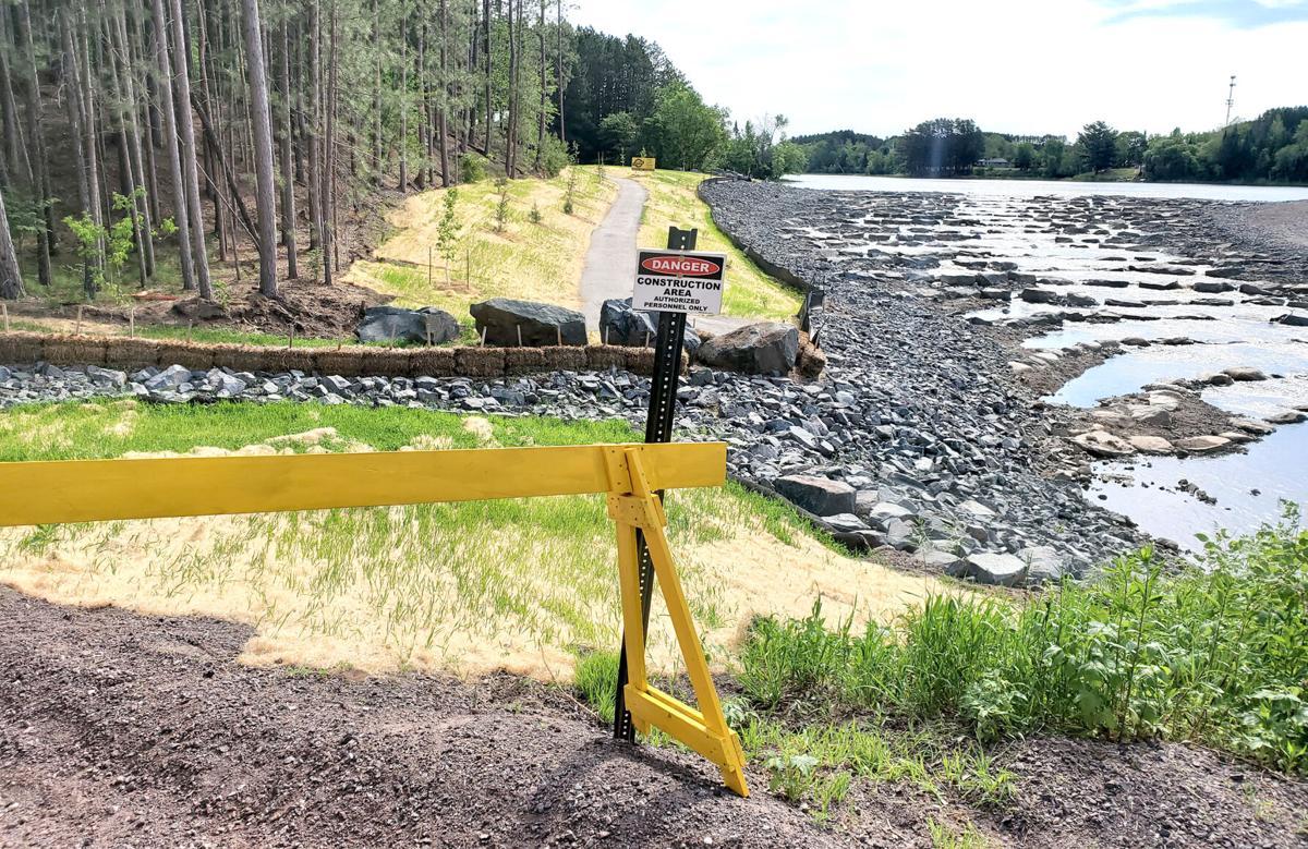 Willow River Dam new vegetation