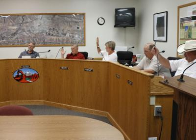 County Council vote