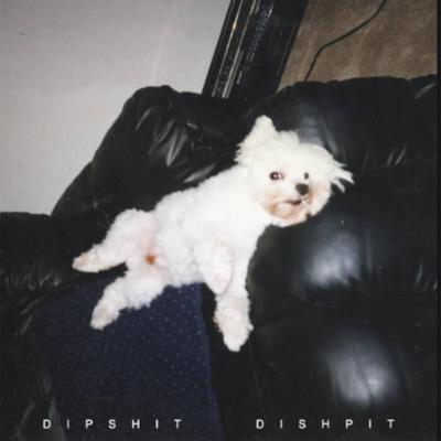 dishpit