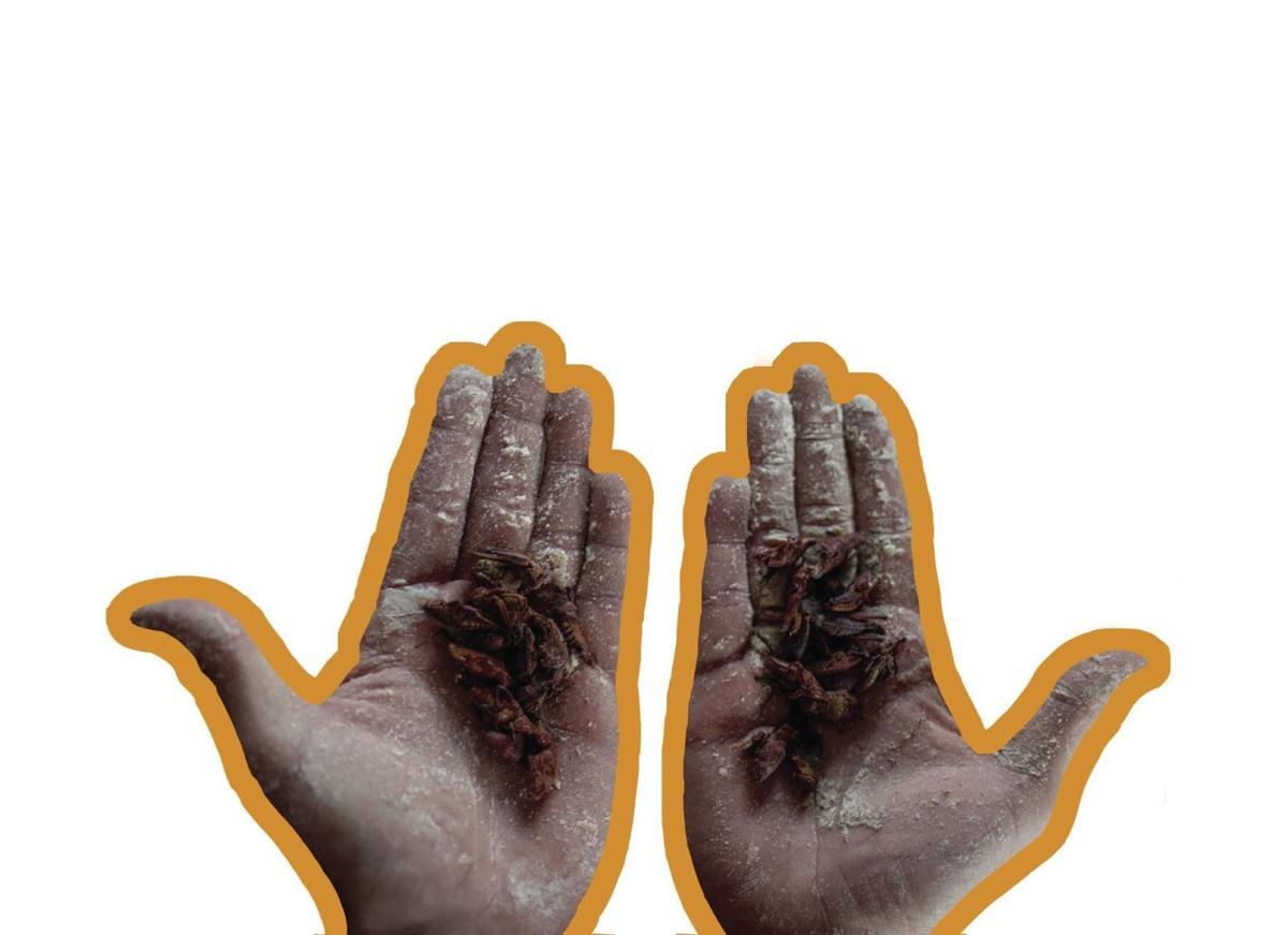 bughands.png
