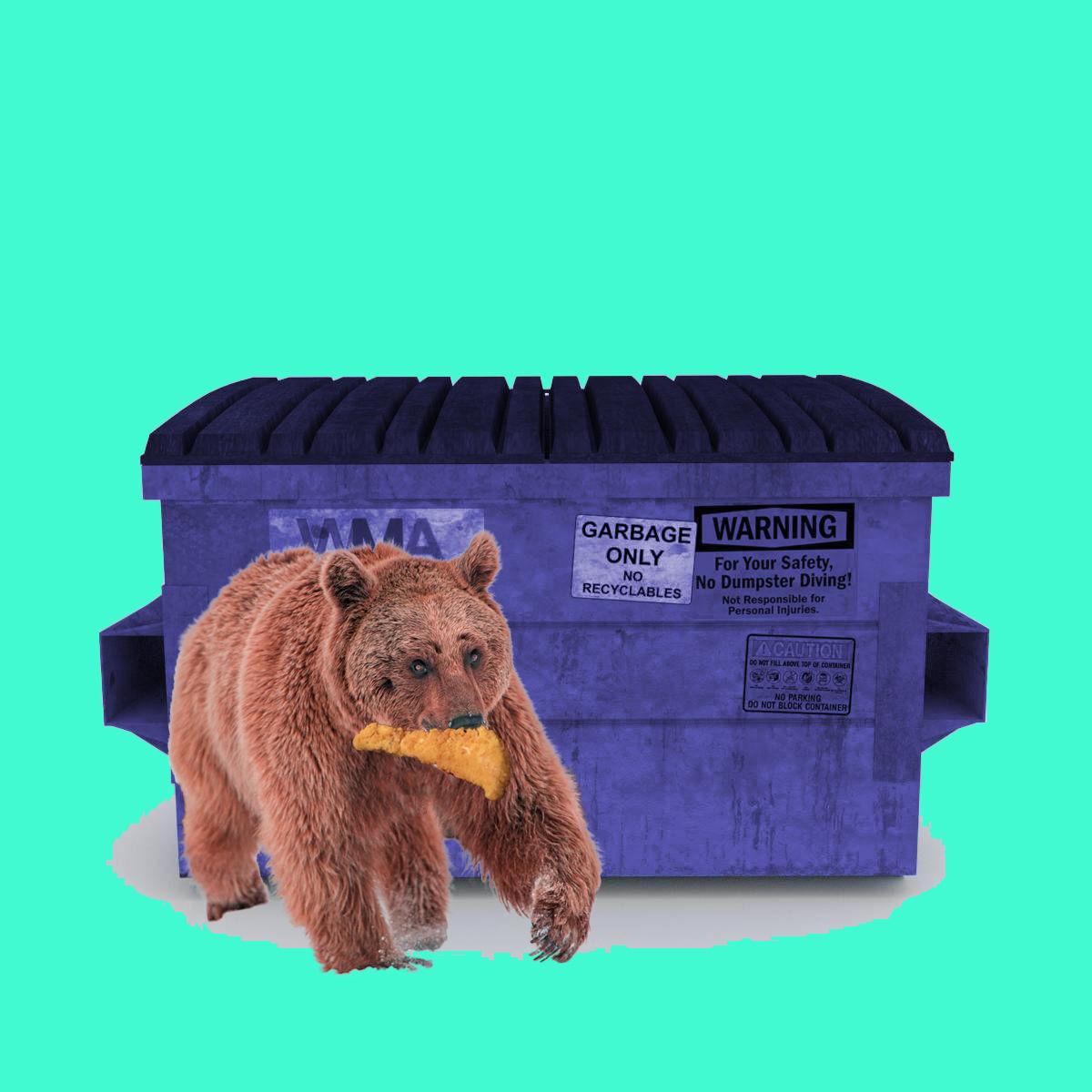 dumpster_bear_koostra