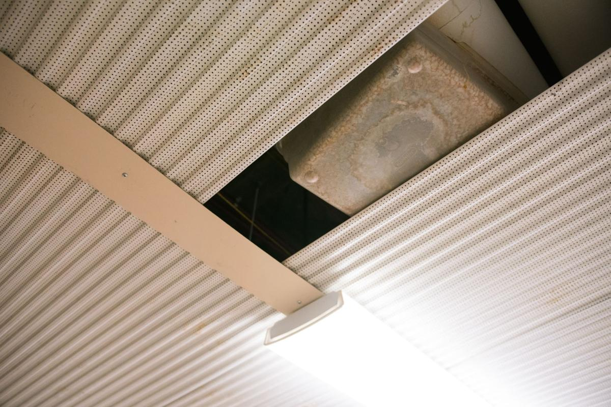 AsbestosOnCampus_Wiggins03