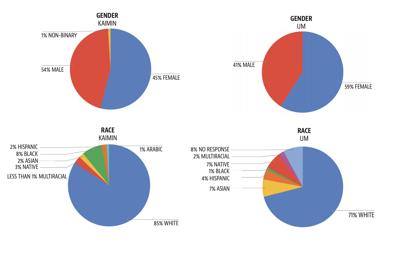 Kaimin source audit stats 2020